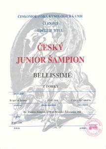 junior-sampion.jpg